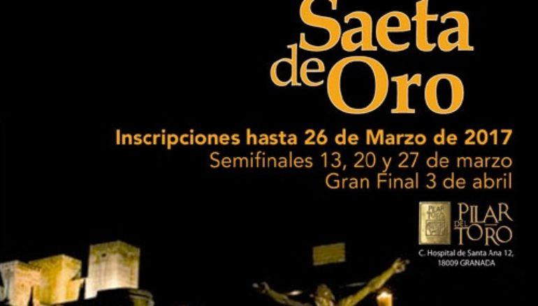 VF Newsletter – March 5 – Saeta de Oro