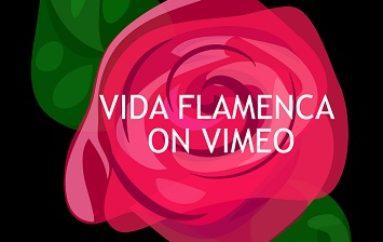 Vida Flamenca on VIMEO!