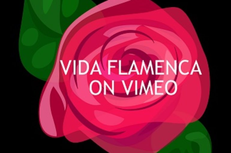 Vida Flamenca on VIMEO!