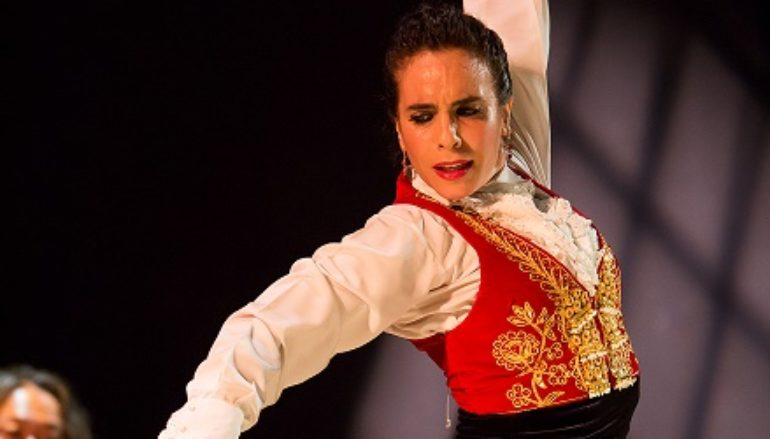 Vida Flamenca Newsletter!