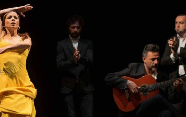 VFlamenca Newsletter – August 13 – Fall into Flamenco!