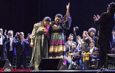 VFlamenca Newsletter / October 22 / Flamenco esencial