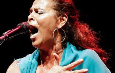 Vida Flamenca Newsletter / November 12 / Nourish your Soul!