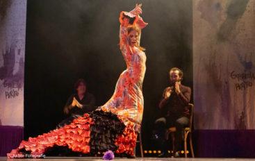 'Cumbre Flamenca' featuring María Juncal // SAT., FEB. 3 . 8pm // Burbank
