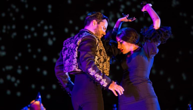 Thank You on Behalf of Vida Flamenca!