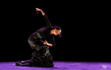 Gala Flamenca '20 Irvine Barclay