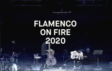 Festival Flamenco on Fire 2020