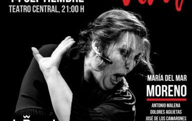Bienal – María del Mar Moreno