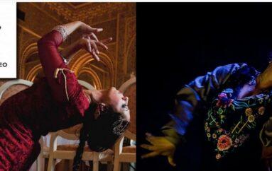 IV Festival Flamenco Mediterráneo – Alicante