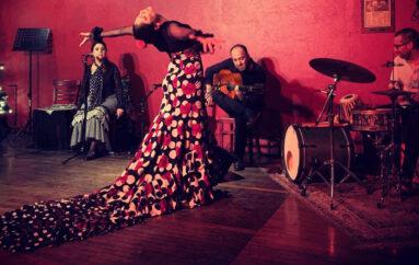 "Online Flamenco Classes with Lakshmi Basile ""La Chimi"""