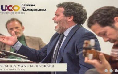 Cátedra De Flamencología Universidad de Córdoba / Cristina Cruces y Manolo Franco