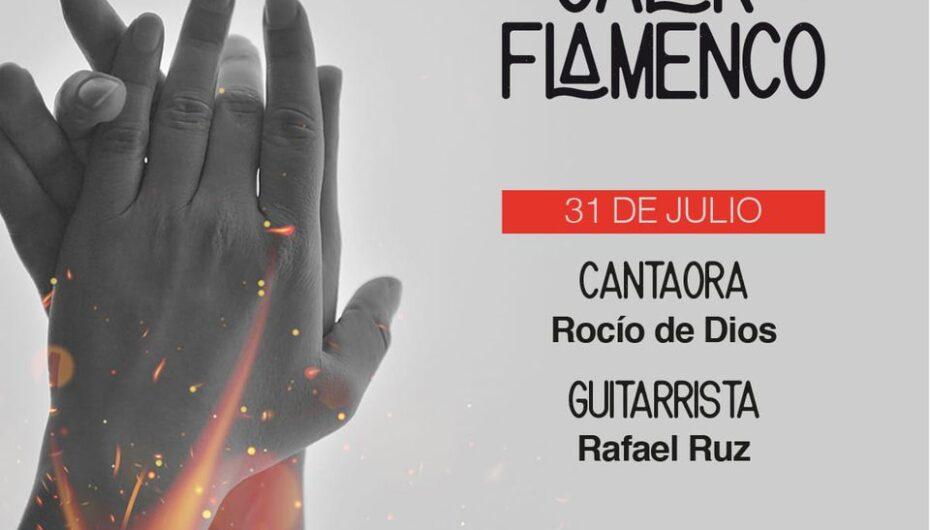 Al calor del Flamenco | Antonio Porcuna 'El Veneno' | Córdoba